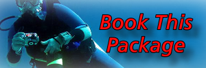 Book This Dive Package At Linaw Beach Resort